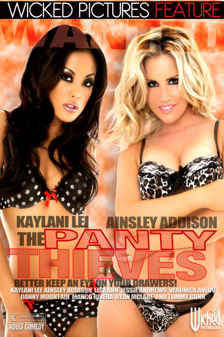 The Panty Thieves